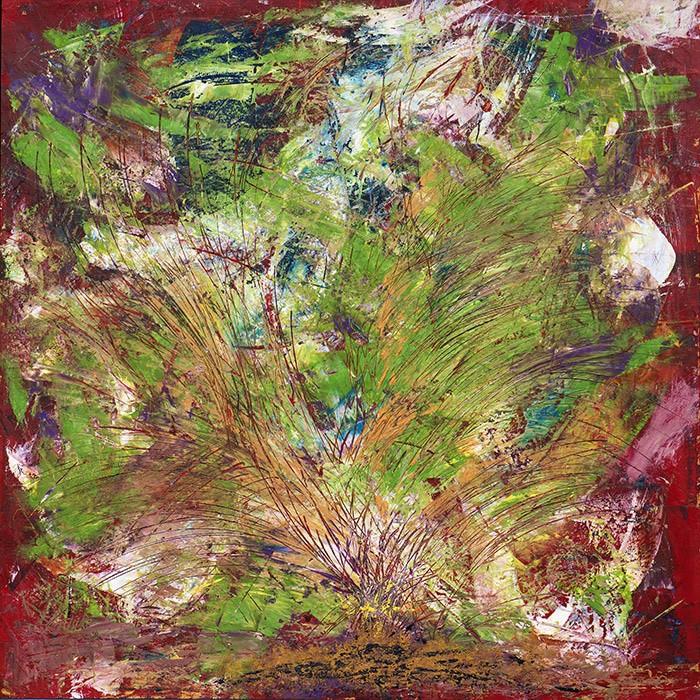 fiore-mediterraneo-vavuso